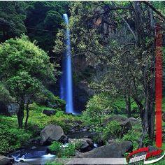 AIR TERJUN OGI, BAJAWA - FLORES =============================== Salah satu tempat wisata yang bisa kita kunjungi saat berada di Bajawa Flores Nusa Tenggara Timur adalah wisata air terjun Ogi.  Air terjun ini hanya berjarak sekitar 8 Km dari bajawa, atau kurang lebih hanya sekitar 25 menit perjalanan dari Ba Closer To Nature, Climbing, Paradise, Plants, Instagram, Flowers, Mountaineering, Plant, Hiking