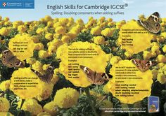Learn about suffixes with our Pin and Print Poster for Success International English Skills for Cambridge IGCSE®. Click the image to download this free poster and pin and print to A3 for use in your classroom. #cambridgeclassroom #engchat #edchat #elt