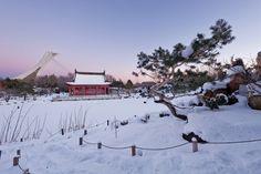 editorial-travel-montreal-botanical-garden-snow-winter-dusk-001