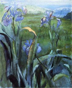 Blue Iris, Study  -   John La Farge  1879   American 1835-1902  Watercolor and gouache on paper