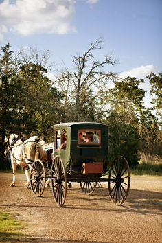 horse & carriage. Preferably in nature or in quaint little villages and towns as seen in Kerry Co, Ireland.