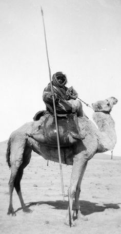 Bedouin spearman holding a spear / lance, with water skins on camel. 1900 to 1920.