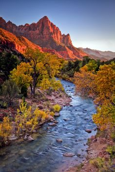 Virgin River Sunset, Zion National Park, Utah by Greg Clure
