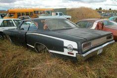 Cars in Barns 199 Ford Mustang, Junkyard Cars, Wrecking Yards, Car Barn, Abandoned Cars, Abandoned Vehicles, Rusty Cars, Automobile, Drag Cars