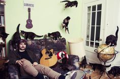 crazy cat lovers