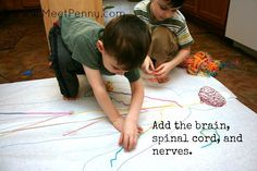 Nervous System Lesson with Printable Game - Meet Penny Human Body Activities, Science Activities, Science Projects, School Projects, Human Body Unit, Human Body Systems, Science Education, Health Education, Physical Education