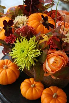 Halloween - ❄ www.pinterest.com/WhoLoves/Halloween ❄ #halloween