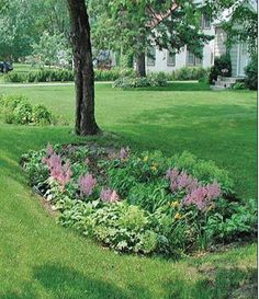 75 Beautiful Rain Garden You Should Have In Your Home Front Yard 260 75 Wunderschöner Regengarten, d Rain Garden Design, Water From Air, Rainwater Harvesting, Types Of Plants, Bog Plants, Shade Plants, Front Yard Landscaping, Landscaping Ideas, Landscape Design