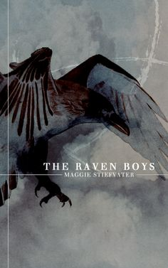 There's rich boys! Poor boys! Sad boys! Angry boys! Raven boys! Collect them all! (c) Maggie Stiefvater