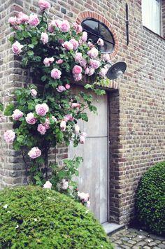 Destinations | The Little Monastery: Belgium