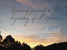 Aristotle quote.3