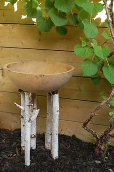 I love the birch legs for this bird bath. It could also be a planter with plants that flow down.