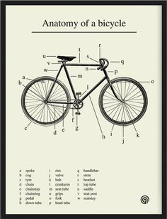 Anatomy of a bicycle, in a lovely print by Antony Oram. Pair with this illustrated vintage bike safety manual and the brief history of the p...