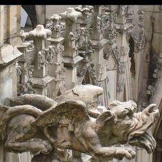 Gargoyle on The Duomo in Milan, Italy