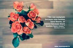 We Can Complain Because Rose Bushes Have Thorns or Rejoice Because Thorn Bushes Have Roses - Abraham Lincoln
