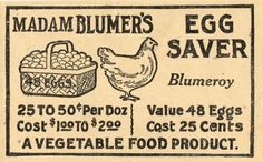 Vintage Egg Coupon