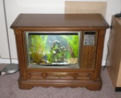 Old TV Aquarium! Cool!