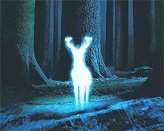 Funny Harry Potter Expecto Patronum Gif