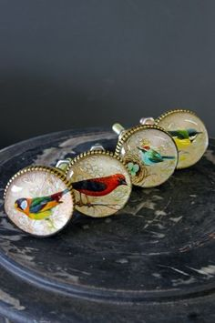 Set of 4 Beautiful Bird Knobs - Style 2