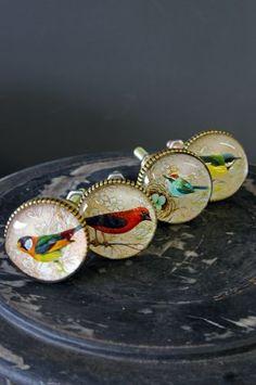 Set of 4 Beautiful Bird Knobs - Style 2