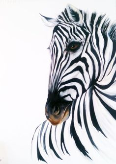 ARTFINDER: Zebra on huge canvas 30 x 40 inches by vicki griggs - A huge original oil painting of a zebra on a large stretched canvas ready to hang or can be framed. This painting would make a big statement to a room. I ...