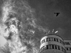 Photo Of The Week (51) Baśniowa Gdynia. Link do galerii: http://galeria.trojmiasto.pl/Najciekawsze-zdjecia-tygodnia-20-11-26-11-2015,10,225.html