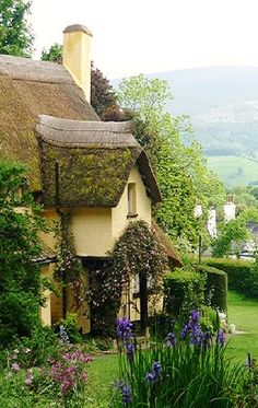 Cottage and countryside in ENGLAND