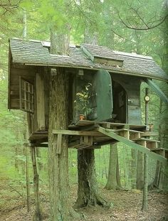 Love the door on this tree house. I always wanted a tree house. I still want a tree house! 10 Tree, In The Tree, Cool Tree Houses, Tree House Designs, Little Houses, Play Houses, Dog Houses, Dream Houses, Architecture