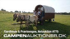Campen Auktioner A/S - Fjordheste & Prærievogne #775