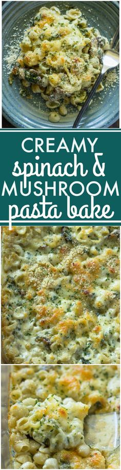Creamy Spinach and Mushroom Pasta Bake | Gimme Delicious