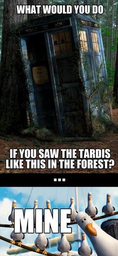 i'd run to it! i dibs the tardis! i'm going to space and beyond!