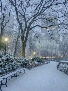 65 Ideas For Winter Landscape City Central Park Winter Magic, Winter Snow, Winter Park, New York Central, Central Park, New York Christmas, Winter Scenery, Snow Scenes, Winter Pictures