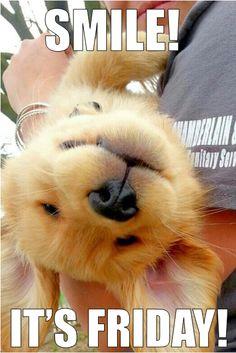 Cute Happy Friday Images Golfclub