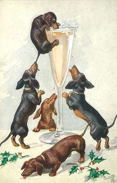Dachshund Parade Vintage — Vintage Happy New Year Dachshunds postcard on. Vintage Dachshund, Dachshund Art, Vintage Dog, Daschund, Vintage Style, Best Dog Training, Puppy Obedience Training, Animals And Pets, Cute Animals