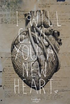 "spiritualinspiration: "" ""I will give you a new heart and put a new spirit in you; I will remove from you your heart of stone and give you a heart of flesh"" (Ezekiel 36:26, NIV) In life, we all have..."