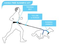 Canicross is the sport of cross country running with one or two dogs, always attached to the runner. The runner typically wears a waist belt, the dog a harness,
