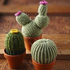 Cute cacti pin cushion