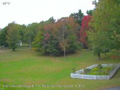 Live Fall Foliage Map New England Today
