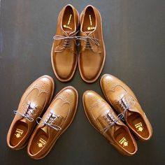 """djbanor """"Why don't you brogue, bro?"""" @alden_shoes x @theshoemart whiskey shell cordovan PTB @alden_shoes whiskey shell cordovan LWB @alden_shoes x @harrison_limited whiskey shell cordovan SWB 2017/07/19 14:26:13"""