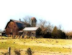 old barns - my favourite thing to photograph Country Barns, Old Barns, Country Life, Country Living, Country Roads, Country Charm, Old Abandoned Buildings, Old Buildings, Farm Barn