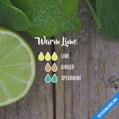 Warm Lime - Essential Oil Diffuser Blend