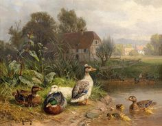 Art Print Animals Ducks Oil painting Picture Printed on canvas P442 #Realism