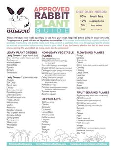 "bigearsbighearts: "" An extensive list of rabbit-safe greens and veggies. """