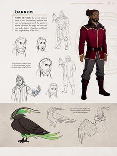 Character Sheet, Character Design, The Dragon Prince Book, Dragon Princess, An Elf, Avatar The Last Airbender, Armors, Creature Design, Dreamworks