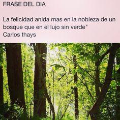 Frase del Día   #citas #frases #frasesnaturaleza #céspedsintetico #jardinería #paisajismo #gardening #landscape #artificialgrass #grass #padel #céspedpadel #futbolindoor #Valladolid #CastillayLeon #naturaleza