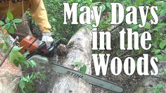 Every so often, my friend Jim and I venture into his family's forest to search for distressed trees that could be turned into lumber. May Days, Metalworking, Outdoor Power Equipment, Woods, Woodworking, Woodland Forest, Forests, Carpentry, Garden Tools