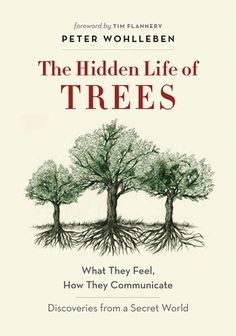 The Hidden Life of Trees : Free Download, Borrow, and Streaming : Internet Archive