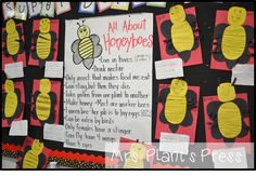 Mrs. Plant's Press: All About Insects
