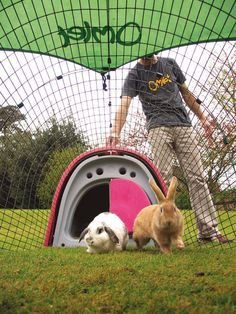 Eglu rabbit home - expensive plastic tat, too small for rabbits! Not accepted by any rabbit rescue centre as adequate housing. Rabbit Life, Rabbit Run, House Rabbit, Bunny Rabbit, Small Animal Rescue, Animal Pictures, Cute Pictures, Bunny Cages, Hamster House