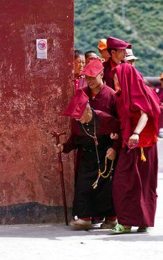 Happy to help! Gautama Buddha, Buddha Buddhism, Buddhist Monk, Tibetan Buddhism, Dalai Lama, Le Tibet, Spiritual Prayers, Himalaya, Bhutan
